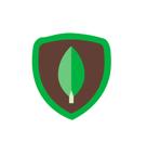 logos_product_logo_mongo_db1.png